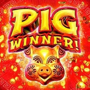 Pig Winner